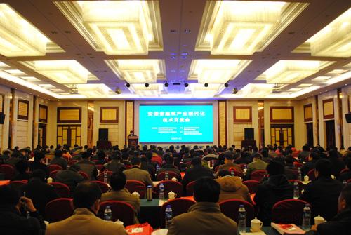 安徽省建筑产业现代化技术交流会成功举办
